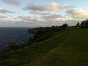 崖の上のドッグラン